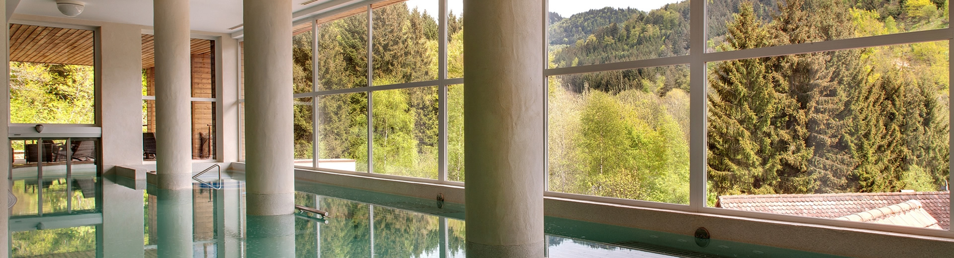 Bassin du Nature Spa de la Cheaneaudiere en Alsace