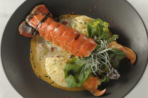 gal-restaurant-homard