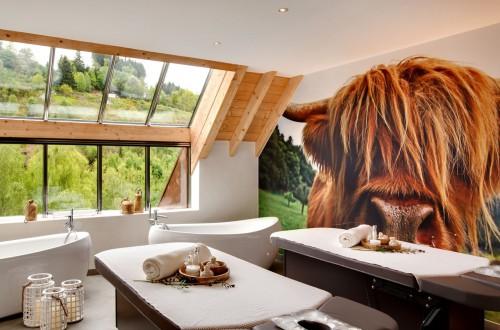 """La vache Spaquerette orne le mur de la suite de soin """"Prairie"""" du Nature-Spa."""